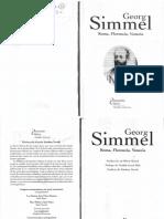 1.2.c Simmel, Georg - Roma, Florencia, Venecia
