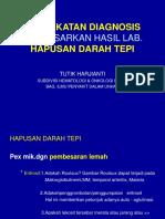 HDT WS HEMA-1