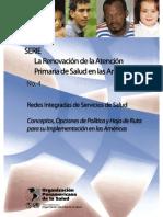 RISS-versión_final_06-26-10.pdf