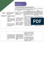 267216380 Caracterizacion de Las Fases Del Ciclo de Vida de Su Producto o Servicio