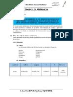 TDR PUESTO DE EDUCACION BELLAVISTA 3.docx