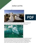 7 Cara Melestarikan Laut Kita.docx