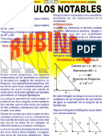RUBIÑOS T N 1