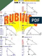 RUBIÑOS T N 2
