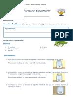 docslide.net_protocolo-experimental-a-princesa-e-a-ervilha.pdf