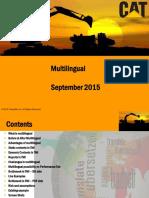 MultiLingual v1.7.pptx