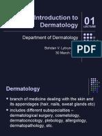 Litvinenko Introduction Dermatology Eng