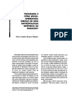 Etnografia_e_questoes_socioambientais_es (1).pdf