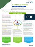 Riesgo_Publico_Definitivo.pdf