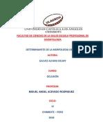 DETERMINANTES DE LA MORFOLOGIA OCLUSA1.docx