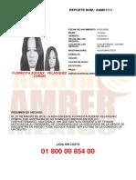Crea Alert a PDF Publico