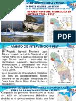 237221768-Ponencia-Una-Puno-Pelt.pdf