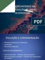 Microrganismos - Recuperação de Áreas Degradadas