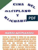 Medicina Del Altiplano