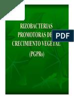 PGPRs.pdf