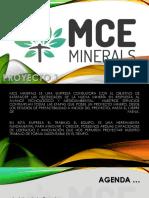 presentacion MCE minerals.pdf