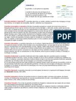 CLASIFICACIÓN DE LOS TIPOS DE GRAMÁTICA.docx