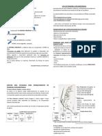 DÍPTICO FICHA USO DE PRADERAS SUPLEMENTARIAS (2).docx