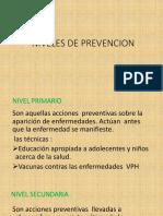 NIVELES-DE-PREVENCION (1)