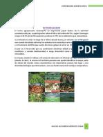 Actividad Agrícola en el Perú