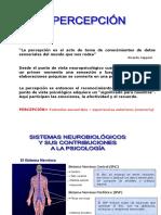 Ppt 2 La Percepcion y La Cognicion Social2