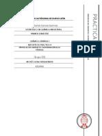 Reporte_de_practica_-_SINTESIS_DE_UN_COM.docx