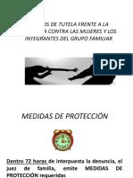 Medidaas de Proteccion