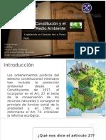 La Constitución y El Medio Ambiente