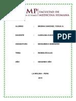 274990196-Trabajo-Seminario-1-Bioquimica.docx