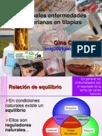 Principales_enfermedades_bacterianas_en_tilapias-Dra._Gina_C.pdf
