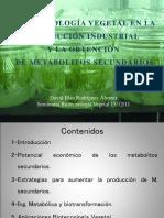 Metabolitos_secundarios_OCW