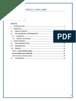 CAIDA LABO DE FISICA 2019.docx