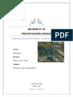 Informe Teorico Para El Estudio y Diseño de Cimentaciones