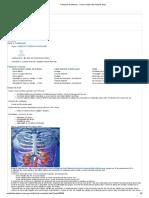 Portal Do Professor - Como Cuidar Dos Nossos Rins