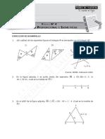 9007-Módulo 4 - Geometría Proporcional e Isometrías 2018 (7_)