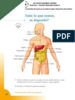 Guia No 2 - Sistema Digestivo Humano - Grado 5.pdf