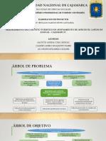 Proyecto de Desarrollo Ppt