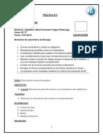 practica-corazon-final.docx