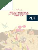 Salgado 2010 -PROCESOS Y PERSPECTIVAS DE LOS TIOC (TIERRA).pdf