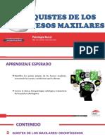 10-SESION-QUISTES-ODONTOGENICOS.pdf