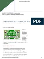 Introduction to the SAP BW Bex Analyzer