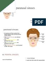 The Paranasal Sinuses
