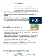4. Ciclos Biogeoquimicos