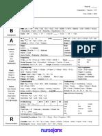 Fullsize SBAR Report Sheet (1)