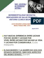 Mortalidad Perinatal - Hma