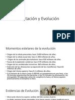7. Adaptación y Evolución.pdf