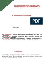 4. glicoproteinas