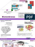 14 membranas.pdf