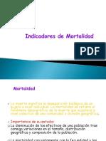 AVPP-MORTALIDAD