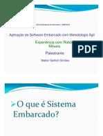 erin_apresentacao
